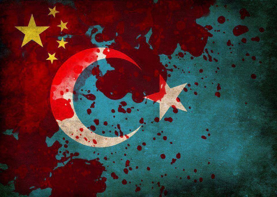 3 Milyon Türk'e Şu An Soykırım Yapılıyor !